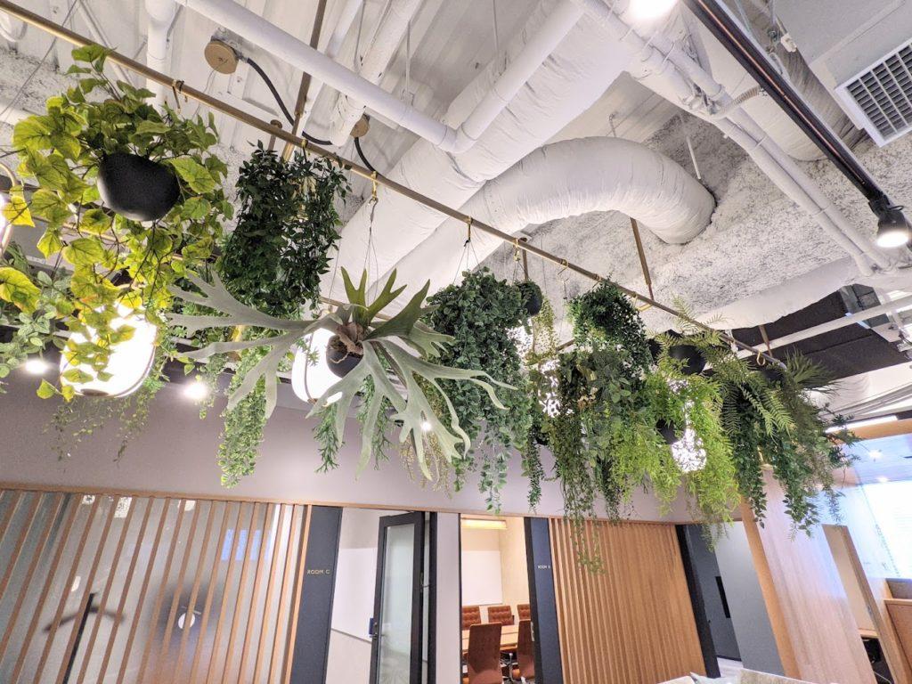 オフィスに導入されたバイオフィリックデザインの緑
